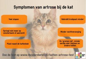 Dierenkliniek Lieshout   Dierenartsen voor huisdier en weidedier
